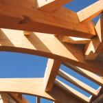Progetto tetto pretagliato